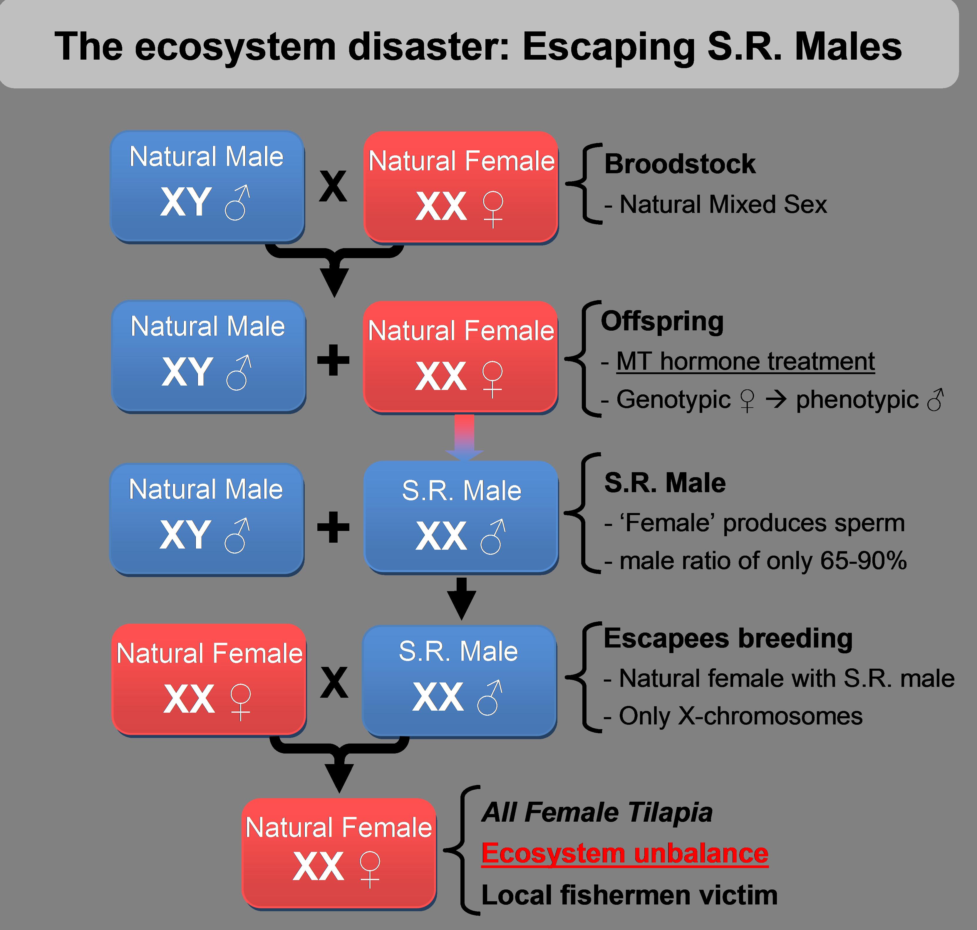 sex male vs female