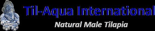 Til-Aqua International